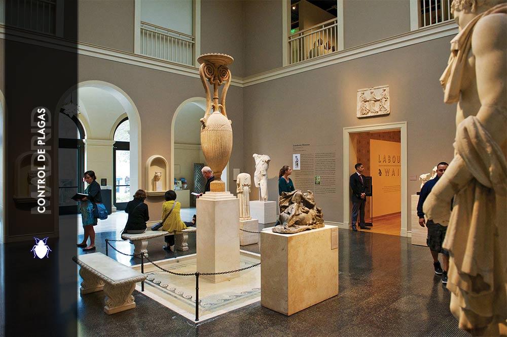 Servicios para Control de Plagas para Museo
